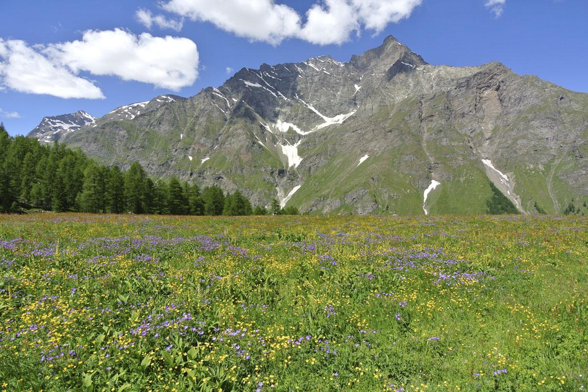 Alpeggio alpino con 500 ettari in Valle d'Aosta